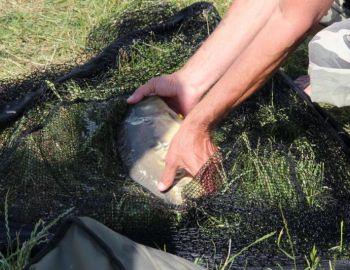 2016.06.19 zawody gruntowe - łowisko Całowanie